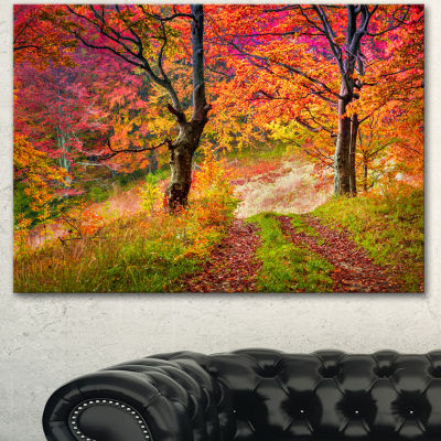 Design Art Bright Colorful Fall Trees In Forest Large Landscape Canvas Art Print