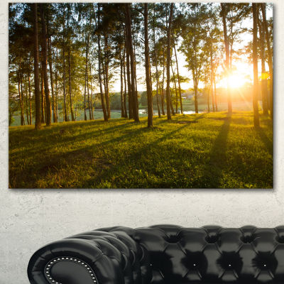 Designart Bright Sunlight In Dense Forest Large Landscape Canvas Art
