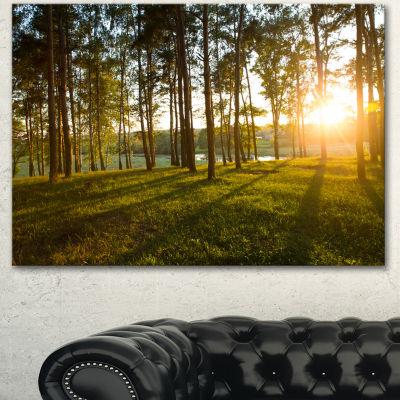 Designart Bright Sunlight In Dense Forest Large Landscape Canvas Art  3 Panels