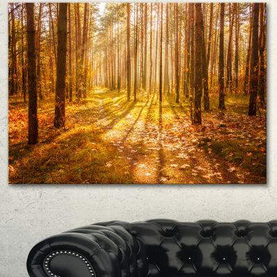 Designart Bright Sunlight In Yellow Fall Forest Modern Forest Canvas Art 3 Panels