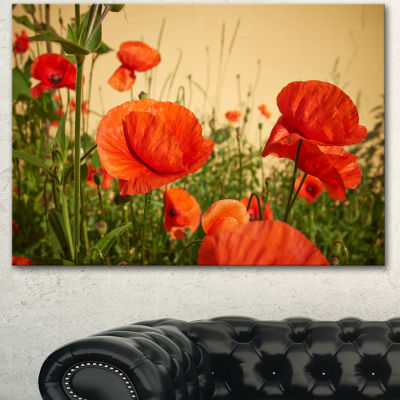 Designart Colorful Red Poppy Flower Field FlowerArtwork On Canvas - 3 Panels