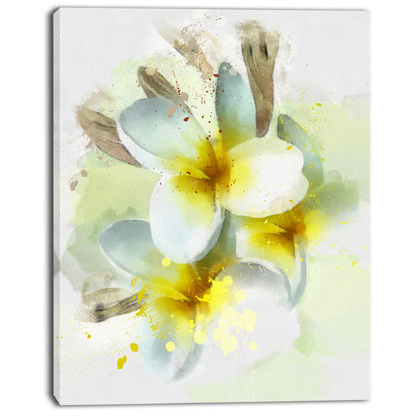 Designart Frangipani Flowers Watercolor Floral Canvas Art Print