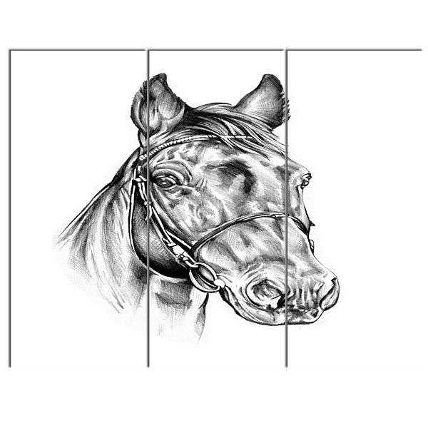 Design Art Freehand Horse Head Pencil Drawing Animal Canvas Art Print - 3 Panels
