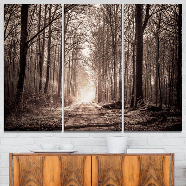 Designart Forest Trail In Sepia Landscape Photography Canvas Art Print - 3 Panels