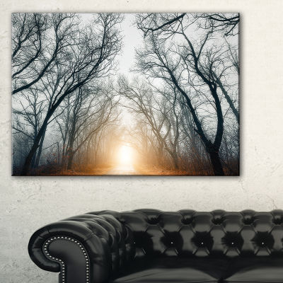 Designart Scary Forest With Yellow Light Landscape Photography Canvas Print