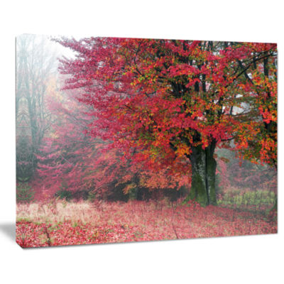 Design Art Calm Autumn Forest After Storm Landscape Photography Canvas Print