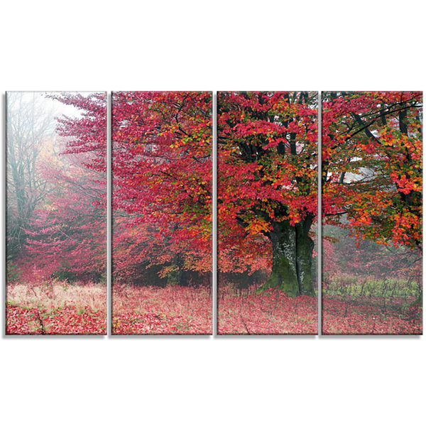 Design Art Calm Autumn Forest After Storm Landscape Photography Canvas Print - 4 Panels