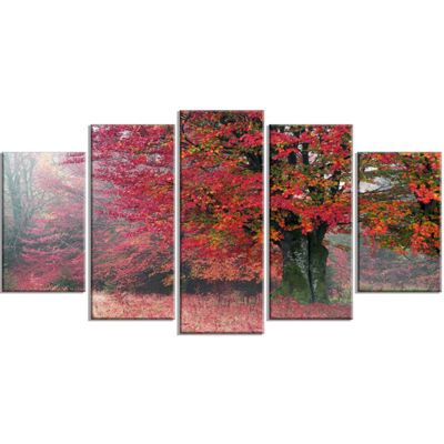 Designart Calm Autumn Forest After Storm LandscapePhotography Canvas Print - 5 Panels