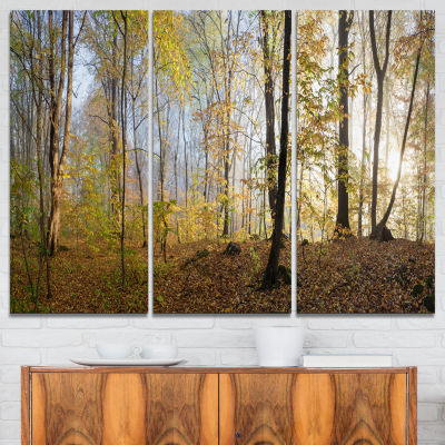 Designart Green Autumn Forest In Morning LandscapePhotography Canvas Print - 3 Panels