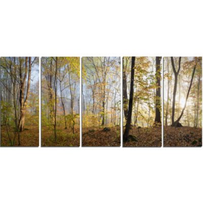 Designart Green Autumn Forest In Morning LandscapePhotography Canvas Print - 5 Panels