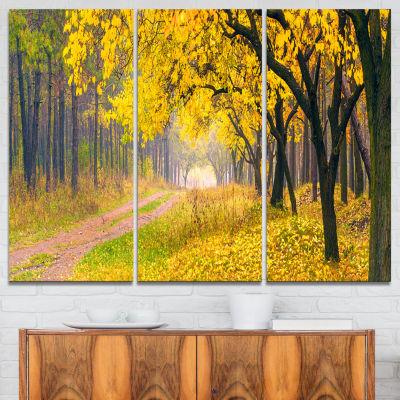 Designart Bright Yellow Autumn Forest Landscape Photo Canvas Art Print - 3 Panels
