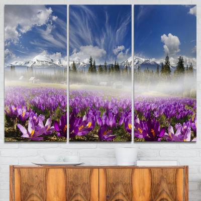 Design Art Spring Flowers Crocuses Photography Canvas Art Print - 3 Panels