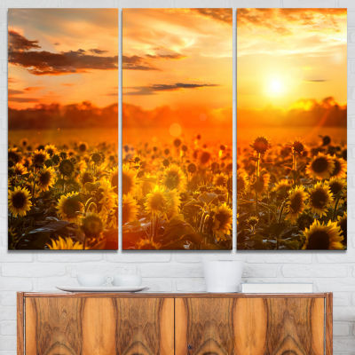 Designart Yellow Sunset Over Sunflowers Photography Art - 3 Panels