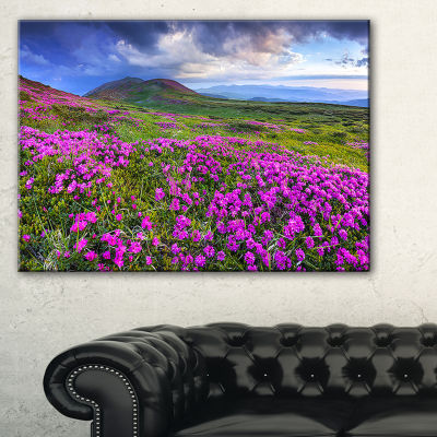 Designart Rhododendron Flowers In Mountains Landscape Photography Canvas Print
