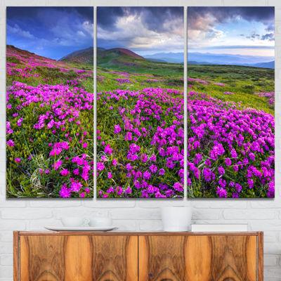 Designart Rhododendron Flowers In Mountains Landscape Photography Canvas Print - 3 Panels