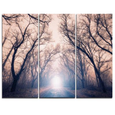 Design Art Mysterious Sunlight In Forest Landscape Photo Canvas Art Print - 3 Panels