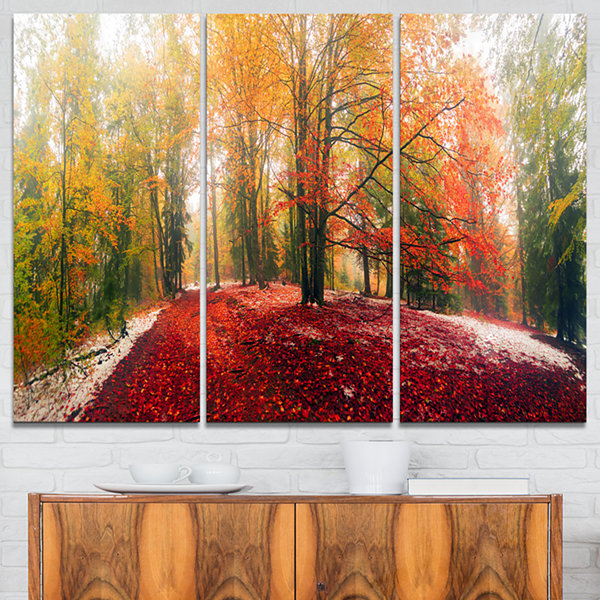 Designart Alpine Forest After Snowfall LandscapePhoto Canvas Art Print - 3 Panels