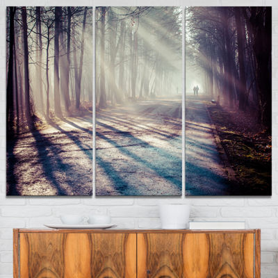 Designart Strong Sunbeams In Thick Forest Landscape Photography Canvas Print - 3 Panels