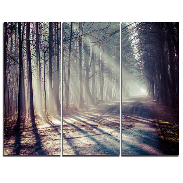 Designart Morning Sunbeams To Forest Road Landscape Photography Canvas Print - 3 Panels