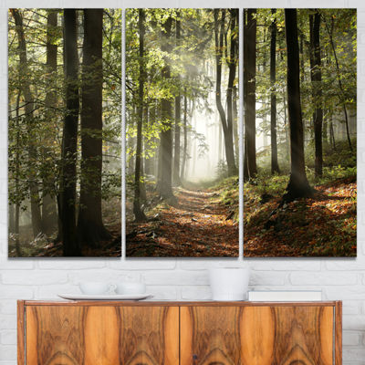 Design Art Green Fall Forest With Sun Rays Landscape Photography Canvas Print - 3 Panels