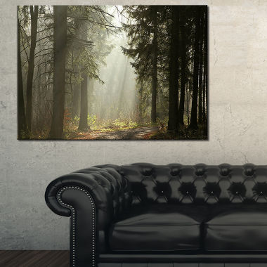 Designart Dark Green Forest With Sun Rays Landscape Photography Canvas Print