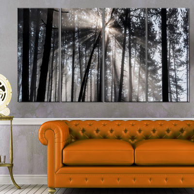 Designart Sunbeams Through Black White Forest Canvas Wall Art Print - 4 Panels