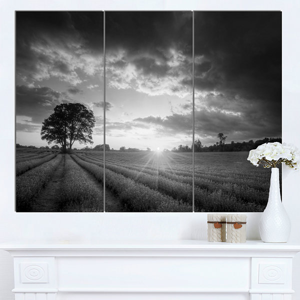 Design Art Vibrant Black White Lavender Field Landscape Canvas Art - 3 Panels