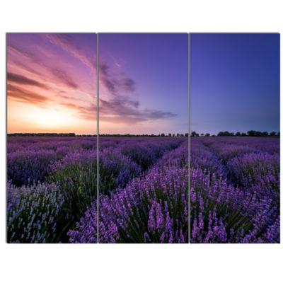 Design Art Beautiful Lavender Flowers At Sunset Canvas Art Print - 3 Panels