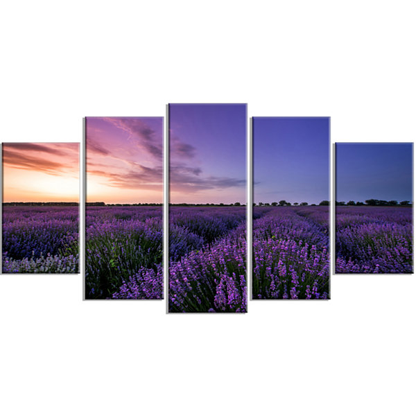 Design Art Beautiful Lavender Flowers At Sunset Canvas Art Print - 5 Panels