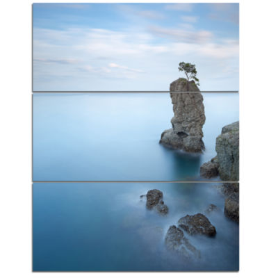 Design Art Pine Tree Rock At Portofino Park BeachPhoto Canvas Print - 3 Panels