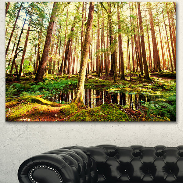 Designart Dense Trees In Green Rain Forest Landscape Canvas Art
