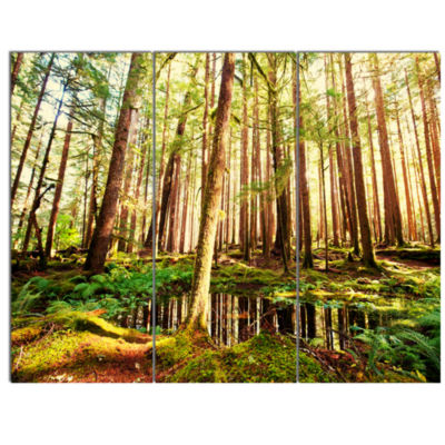 Design Art Dense Trees In Green Rain Forest Landscape Canvas Art - 3 Panels