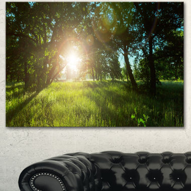 Designart Sunny Day In Green Forest Meadow Landscape Canvas Art