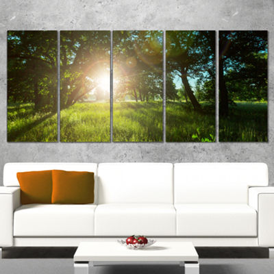 Designart Sunny Day In Green Forest Meadow Landscape Canvas Art - 5 Panels