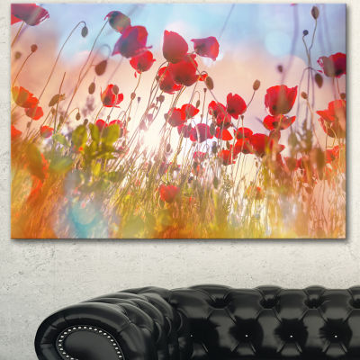 Design Art Cute Poppy Flowers In Sunlight Canvas Art Print