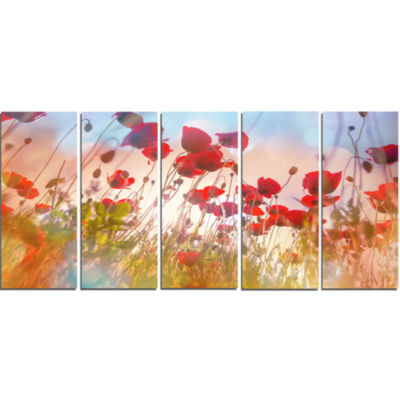 Design Art Cute Poppy Flowers In Sunlight Canvas Art Print - 5 Panels