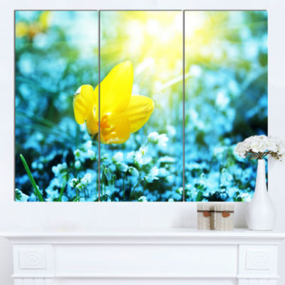 Designart Beautiful Yellow Spring Flower Canvas Art Print - 3 Panels