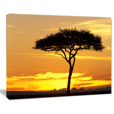 Designart Beautiful Sunset Through Acacia Tree African Landscape Canvas Art Print