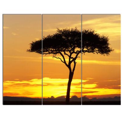 Designart Beautiful Sunset Through Acacia Tree African Landscape Canvas Art Print - 3 Panels