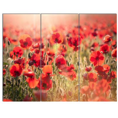 Designart Beautiful Tuscan Red Poppies Floral Canvas Art Print - 3 Panels