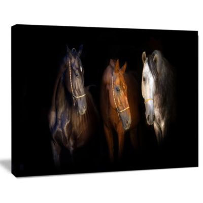 Design art Three Horses With Golden Bridle Animal Canvas Art Print