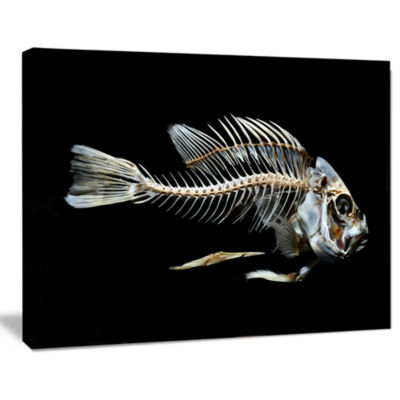 Designart Fish Skeleton Bone On Black Animal Canvas Art Print