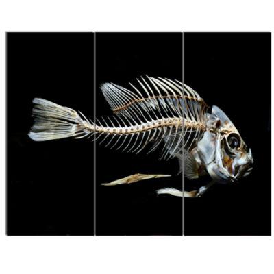 Design Art Fish Skeleton Bone On Black Animal Canvas Art Print - 3 Panels