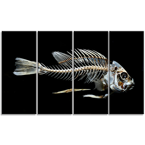 Designart Fish Skeleton Bone On Black Animal Canvas Art Print - 4 Panels