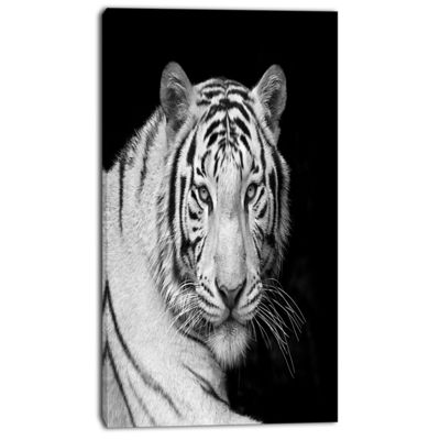 Designart Staring Bengal White Tiger ContemporaryAnimal Art Canvas