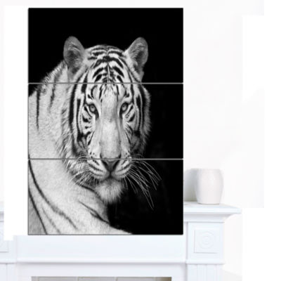 Designart Staring Bengal White Tiger ContemporaryAnimal Art Canvas - 3 Panels