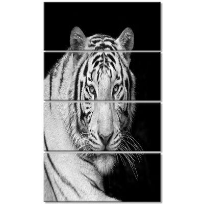 Designart Staring Bengal White Tiger ContemporaryAnimal Art Canvas - 4 Panels