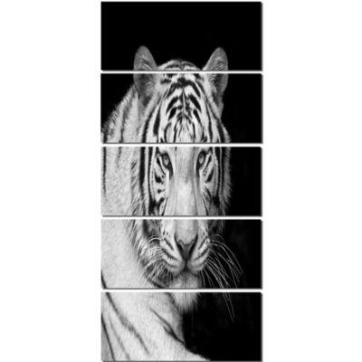 Designart Staring Bengal White Tiger ContemporaryAnimal Art Canvas - 5 Panels