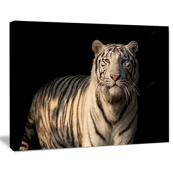 Designart White Bengal Tiger On Black Abstract Canvas Art Print