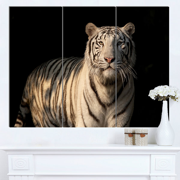 Designart White Bengal Tiger On Black Abstract Canvas Art Print - 3 Panels